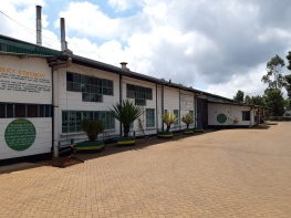 Mungania tea factory